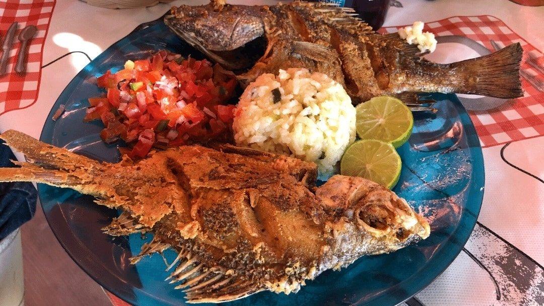 grilled fish, rich and pico de gallo in Baja Mexico