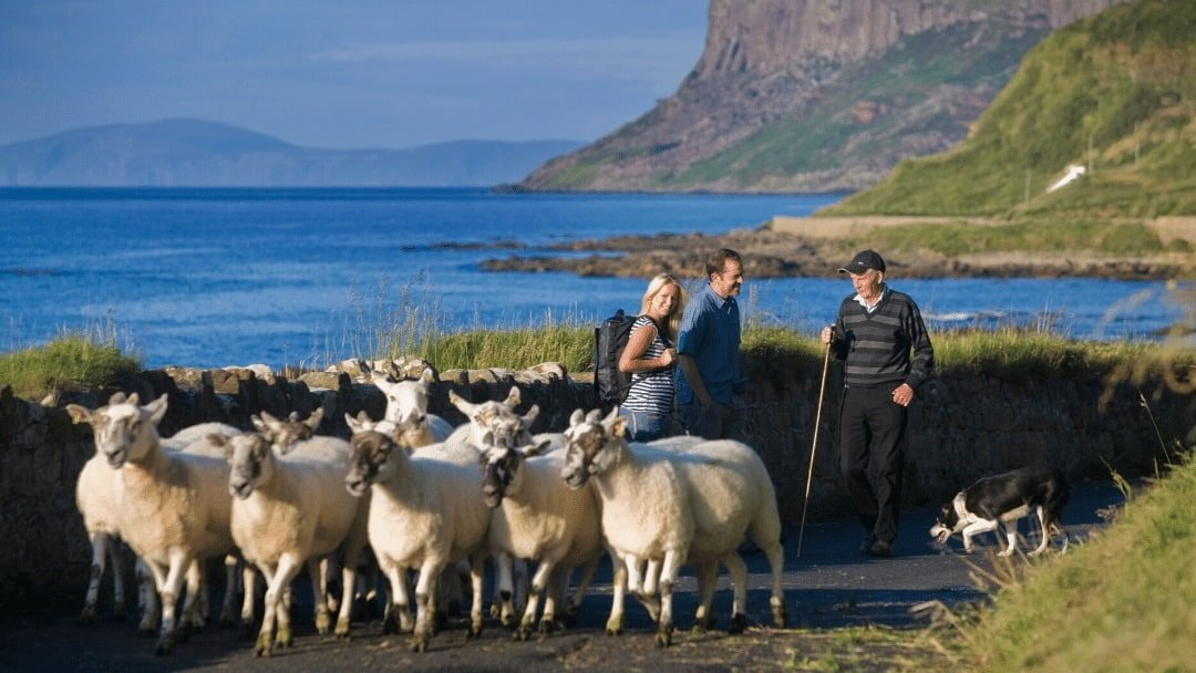walkers saying hello to farmer and sheep on Ireland's Wild Atlantic Way