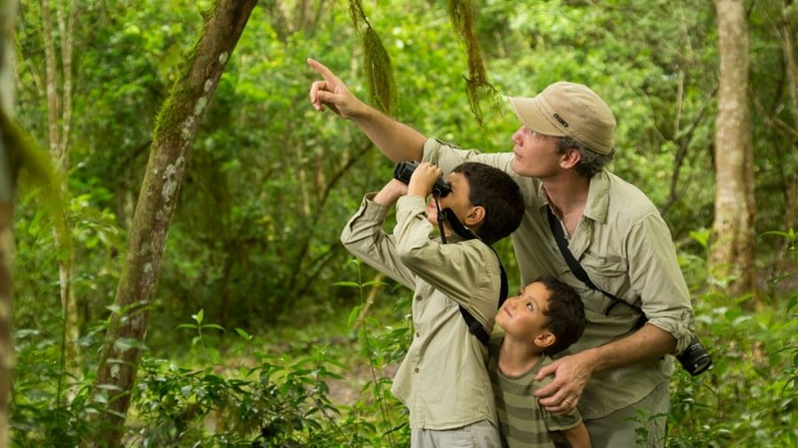 Nature guide pointing to the treetops while two boys watch