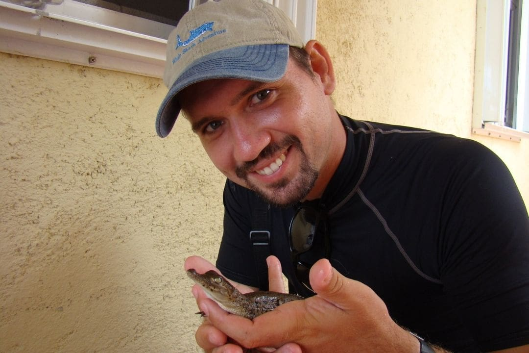 man holding tiny baby crocodile