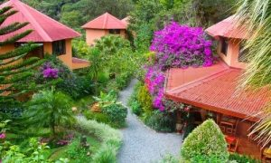hotel with colorful trees and plants