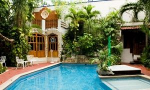 hotel pool with tropical plants