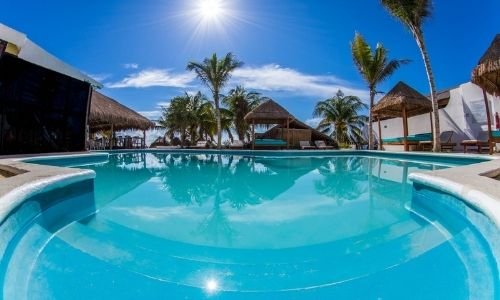 hotel swimming pool with palm trees
