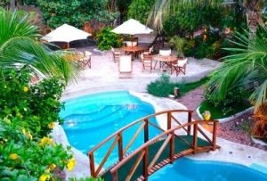 pool with arched wooden bridge surrounded by tropical foliage, umbrellas and chairs